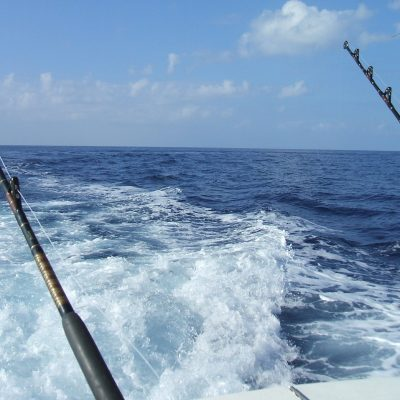 key west fishing charters
